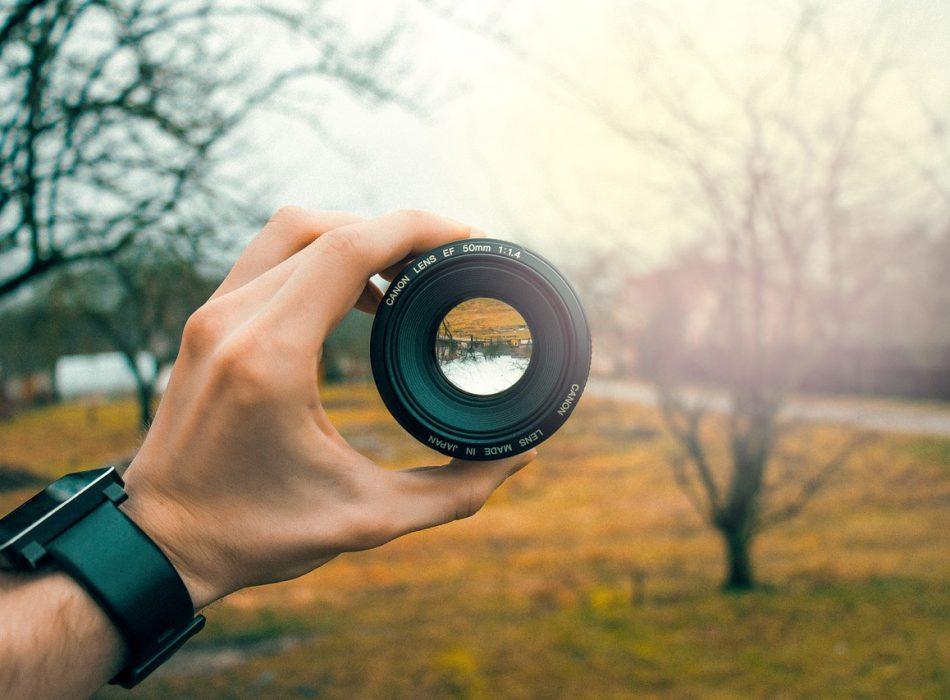 Focus stacking : Pourquoi les photographes doivent connaître cette technique